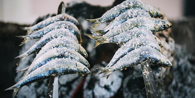 sardinasblog